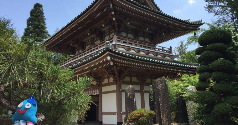 Ośmiorniczka Carmen w Japonii!