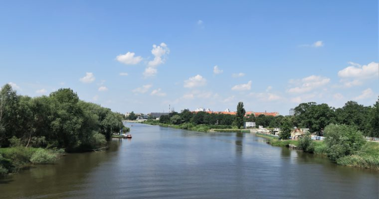 SPACER po Wrocławiu III: Natura w wielkim mieście!